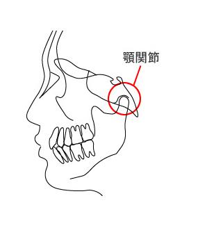 [図]顎関節