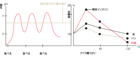 [図3]米、パン、砂糖を摂取したときの血糖値の変化